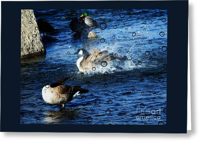 Everyone Duck II Greeting Card by Bobbee Rickard