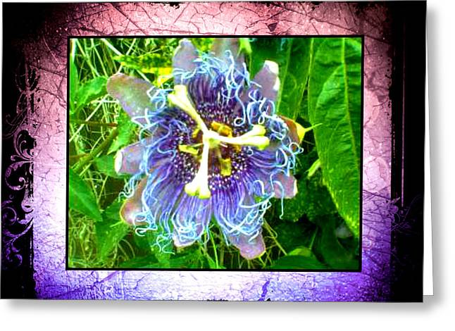 Greeting Card featuring the photograph Exotic Strange Flower by Absinthe Art By Michelle LeAnn Scott