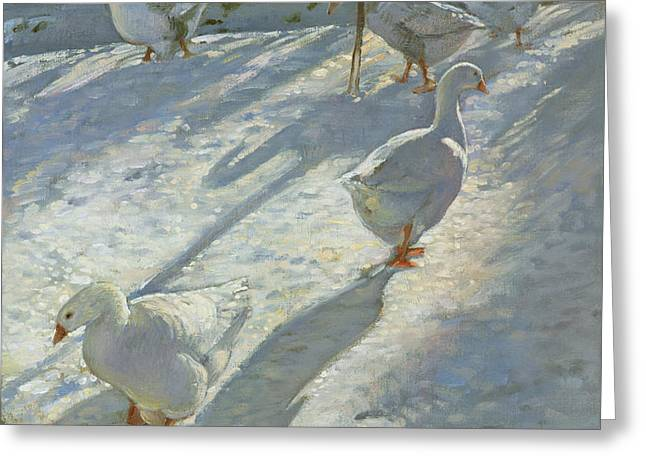 Exploring The Slope Greeting Card by Timothy Easton