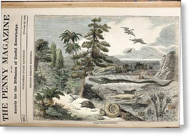 Extinct Animals, Penny Magazine, 1833 Greeting Card by Paul D. Stewart