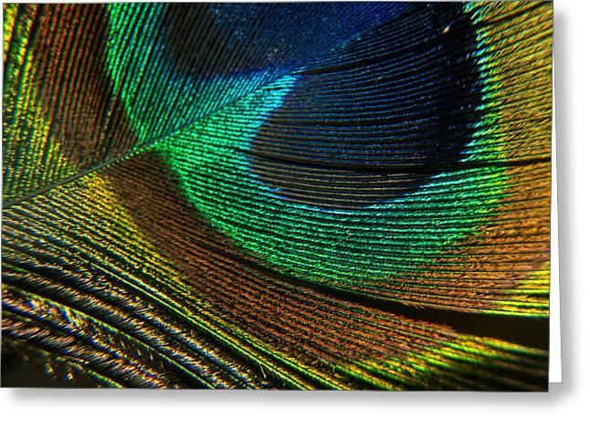 Eye Of The Dragon Lady 3 Greeting Card by Douglas Barnett