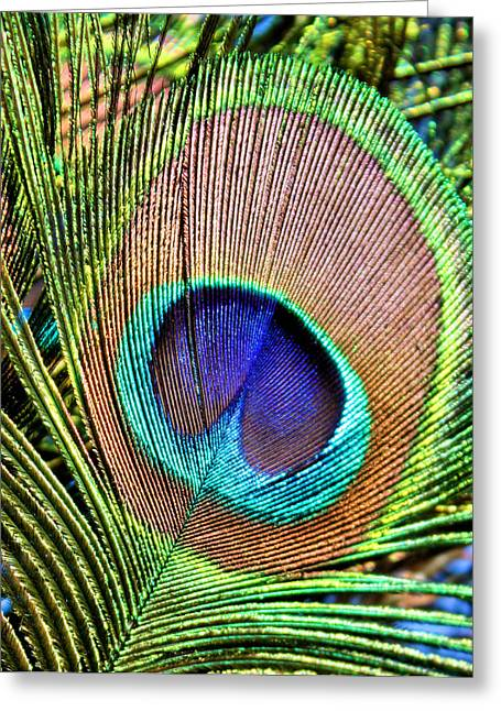 Eye Of The Feather Greeting Card