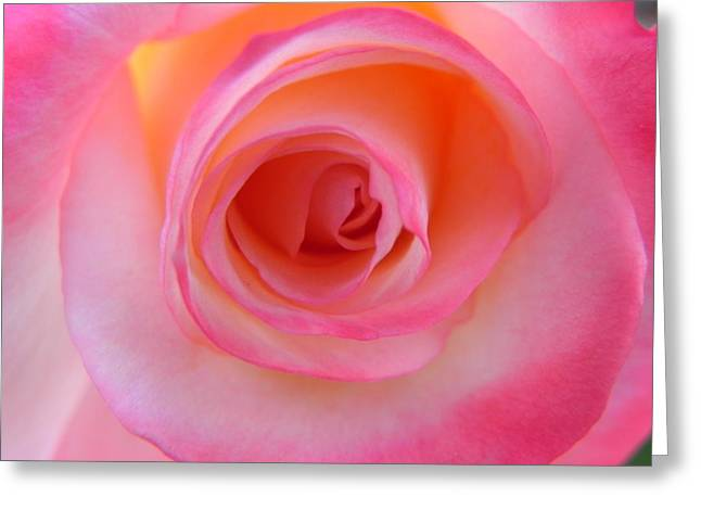 Greeting Card featuring the photograph Eye Of The Rose by Deb Halloran