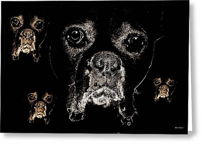 Eyes In The Dark Greeting Card by Maria Urso
