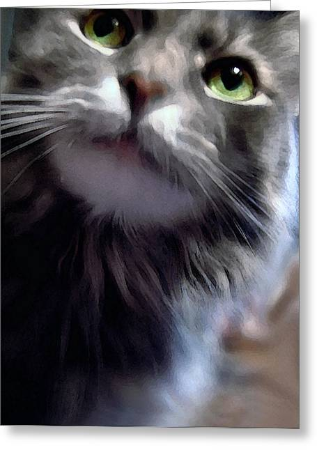 Eyes Nose Mouth Whiskers Greeting Card