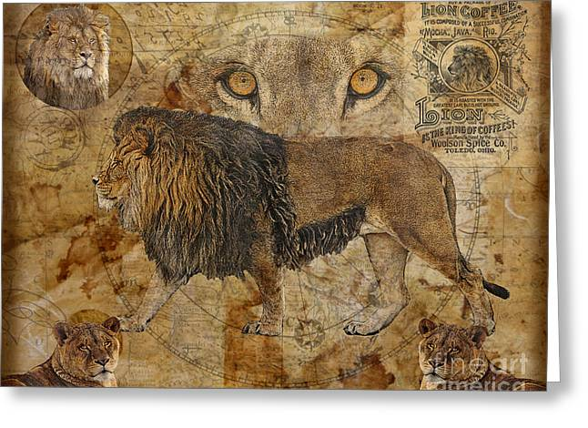 Eyes Of Africa Greeting Card by Judy Wood