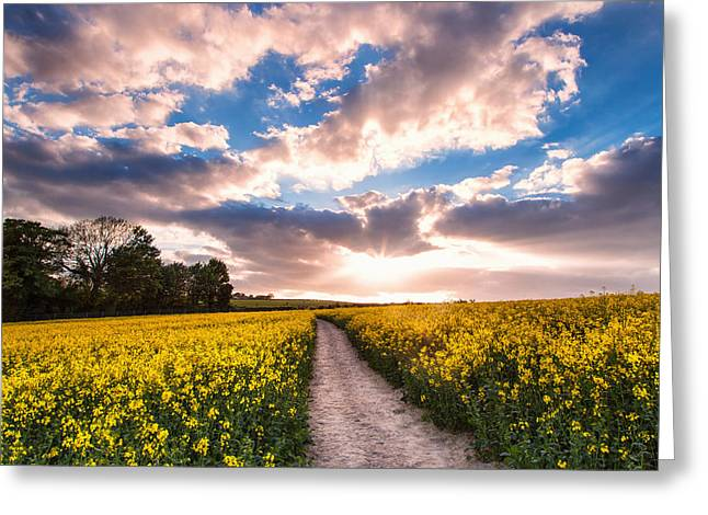 Eynsford Fields Greeting Card