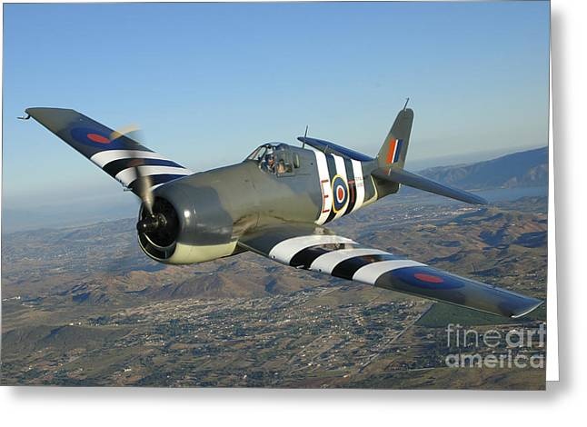 F6f Hellcat Flying Over Chino Greeting Card by Phil Wallick