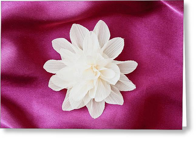 Fabric Flower Greeting Card by Tom Gowanlock