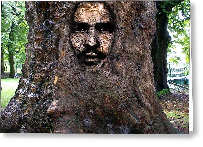 Face In A Tree Greeting Card