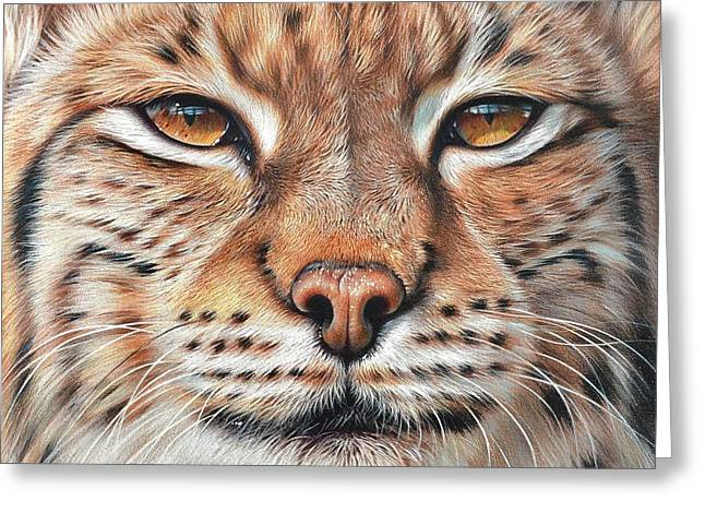 faces of the Wild - Lynx Greeting Card by Elena Kolotusha