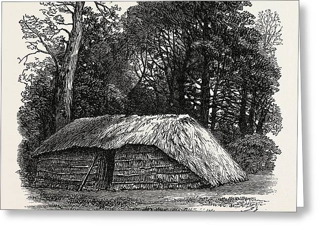 Facsimile Of The Hut Built For Dr. Livingstone To Die Greeting Card by English School