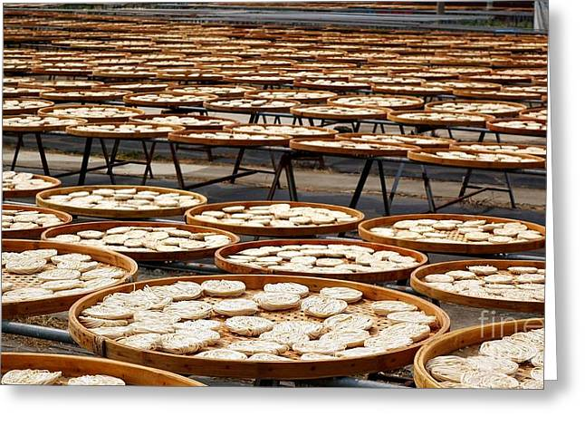 Factory For Sun Dried Noodles In Taiwan Greeting Card