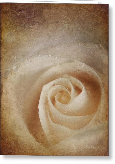 Faded Rose Greeting Card