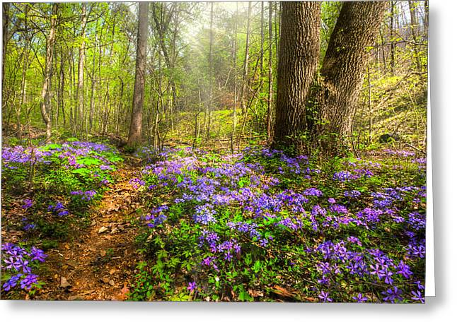 Fairies Forest Greeting Card by Debra and Dave Vanderlaan