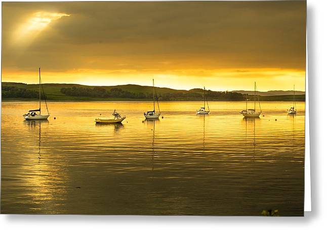 Fairlie Point  At Sunset Greeting Card