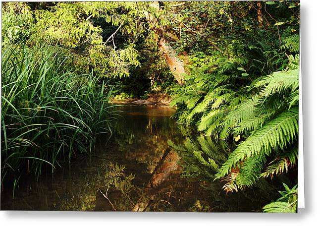 Fairy Forest River Greeting Card