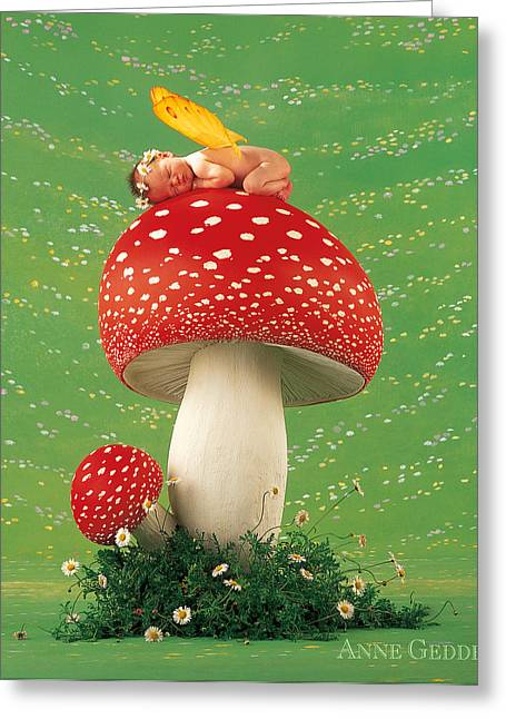 Fine Art Flower Photography Greeting Cards - Fairy on Toadstool Greeting Card by Anne Geddes