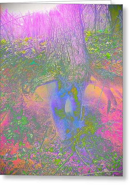 Greeting Card featuring the photograph Fairy Tree by Karen Newell