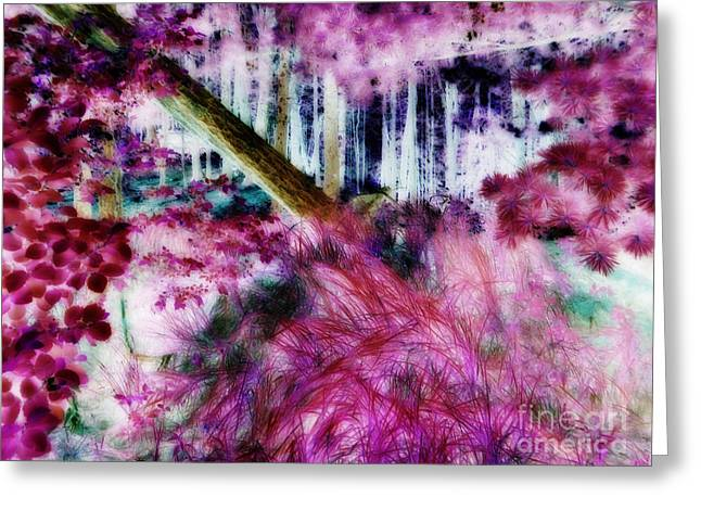 Greeting Card featuring the photograph Fairy Tropicolor by Jamie Lynn