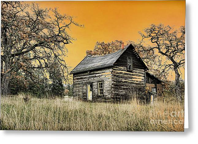 Fall Abandoned Greeting Card by Steve McKinzie
