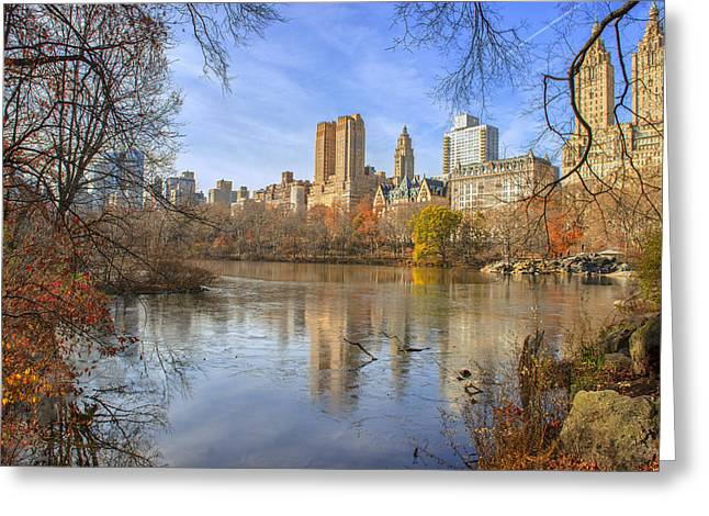 Fall Afternoon At Central Park Greeting Card by Tim Reaves