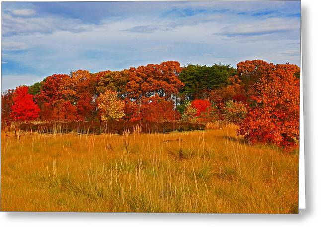 Greeting Card featuring the photograph Fall Along The Highway by Andy Lawless