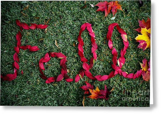Fall Greeting Card by Amy Cicconi