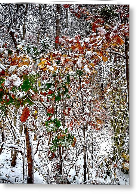 Fall And Winter Greeting Card