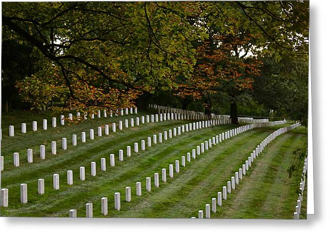 Fall At Arlington Cemetery Greeting Card by DustyFootPhotography