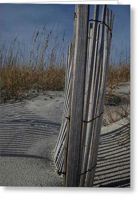 Fall At Atlantic Beach Greeting Card by Bonita Hensley