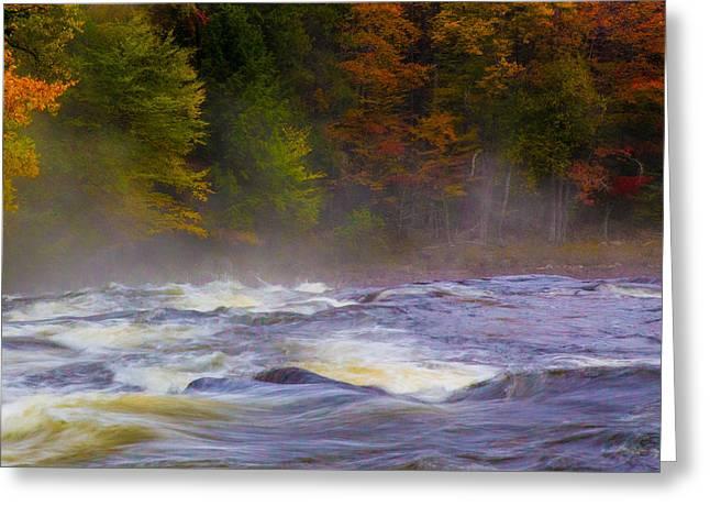 Fall At Buttermilk  Greeting Card by Lori Diemer