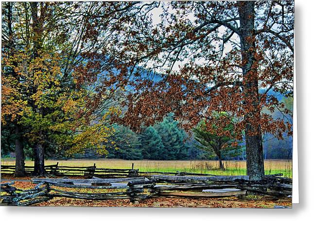 Fall At Cades Cove Greeting Card by Kenny Francis