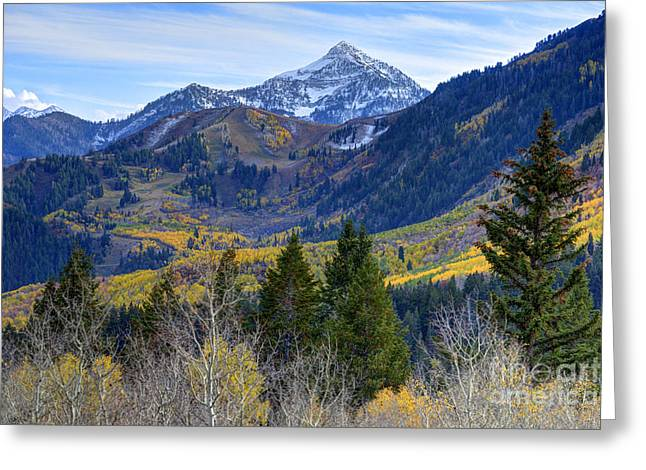 Fall At Cascade Peak And Sundance From Alpine Loop  Greeting Card