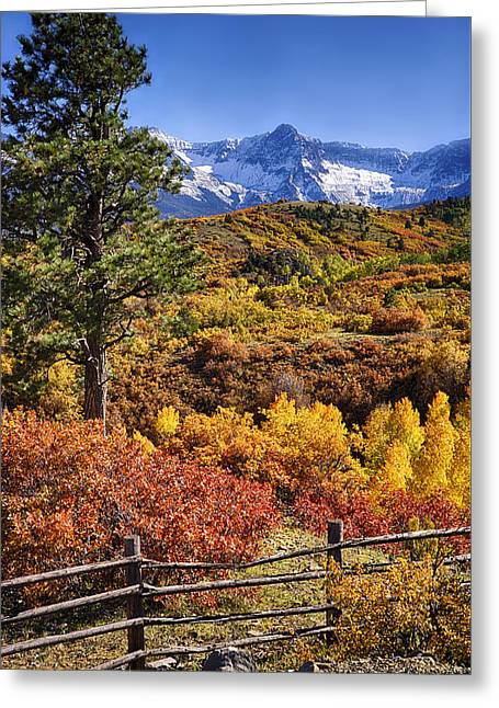 Fall At Dallas Divide Greeting Card
