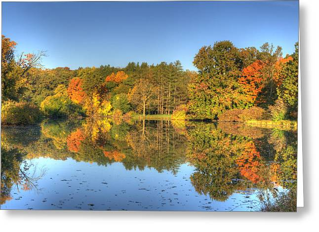 Greeting Card featuring the photograph Fall At Lake Marmo by Ed Cilley