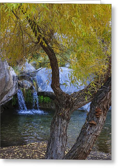 Fall At Murray Falls I Greeting Card by Scott Campbell
