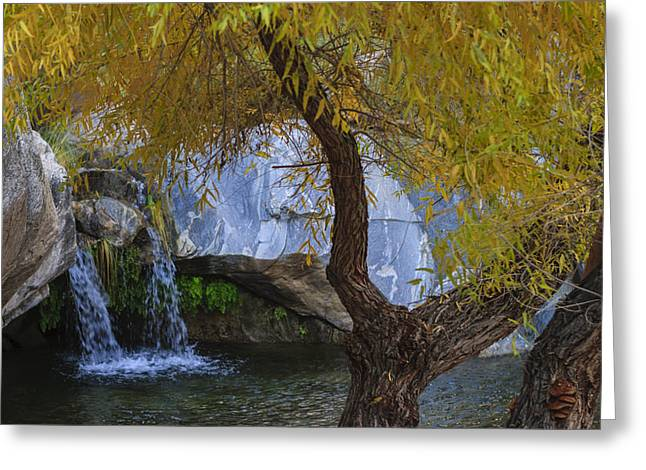Fall At Murray Falls II Greeting Card by Scott Campbell