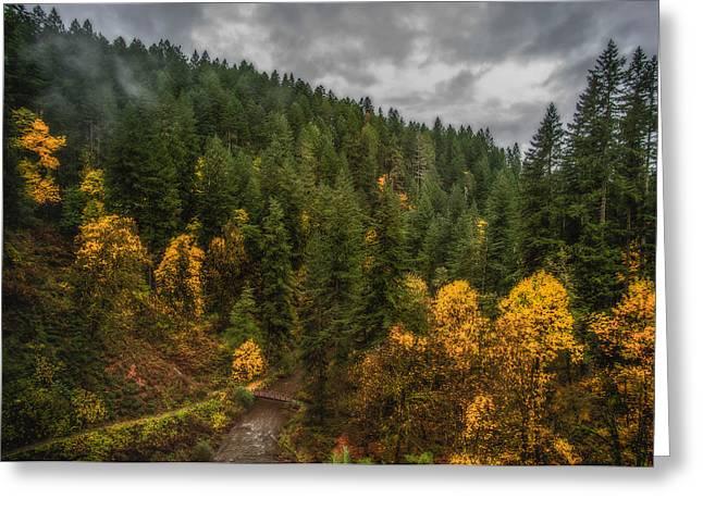 Fall At Silver Falls Greeting Card