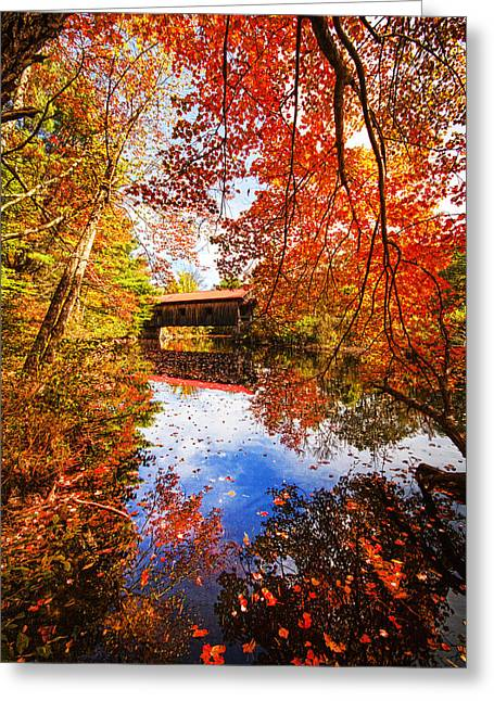 Fall At Waterloo Greeting Card