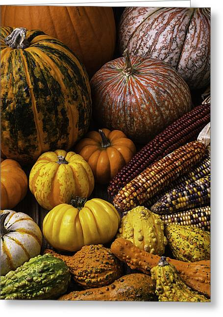 Fall Autumn Abundance Greeting Card by Garry Gay