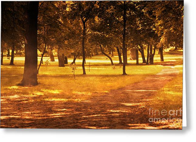 Fall Autumn Park Greeting Card by Michal Bednarek
