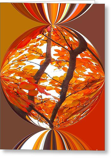 Fall Ball - Autumn Color Greeting Card by Scott Cameron