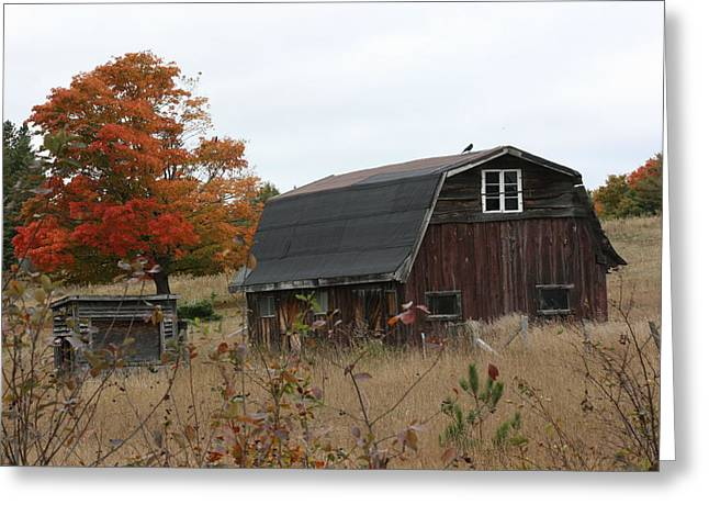 Greeting Card featuring the photograph Fall Barn by Paula Brown
