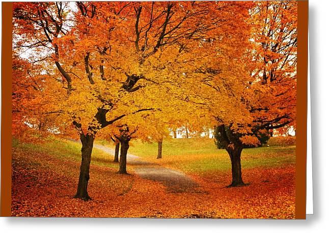 Fall Blaze Greeting Card by Chris Berry