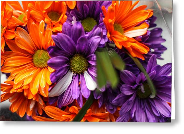Fall Bloom Greeting Card by Brandon Hussey