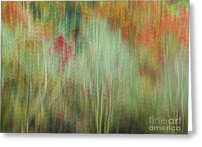 Fall Color Abstract 2 Greeting Card
