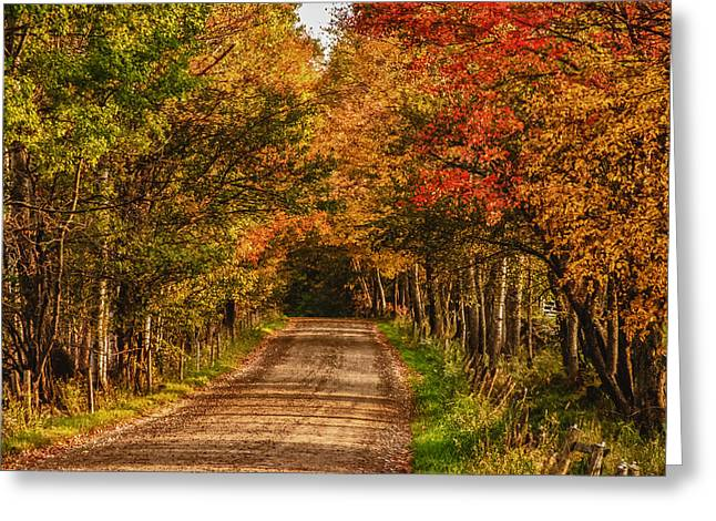 Greeting Card featuring the photograph Fall Color Along A Dirt Backroad by Jeff Folger