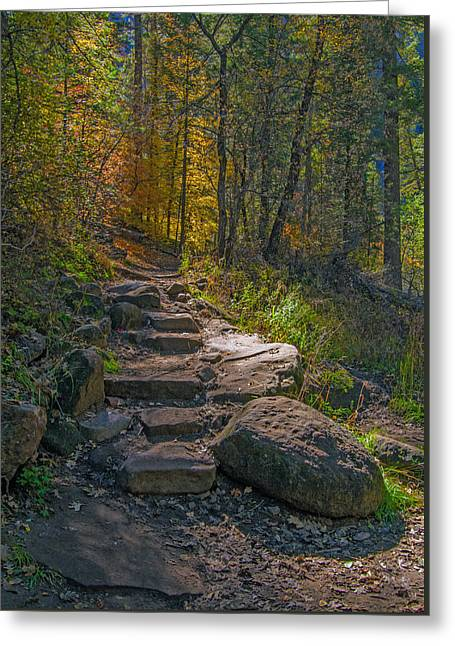 West Fork At Oak Creek Greeting Card
