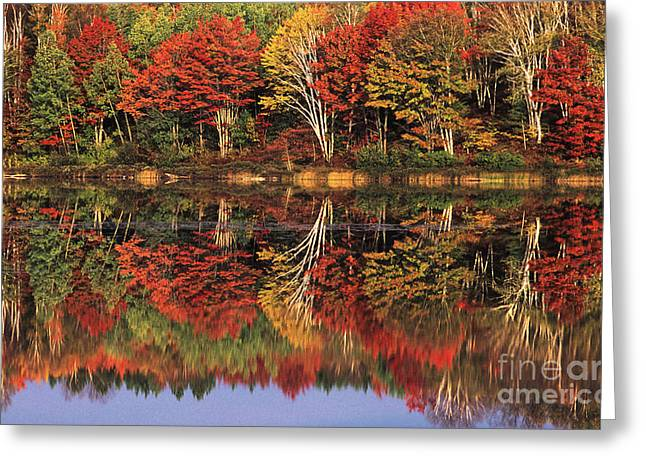 Greeting Card featuring the photograph Fall Color Reflected In Thornton Lake Michigan by Dave Welling